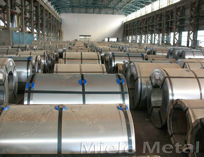 PPGI Galvanized Steel Coil Factory Price